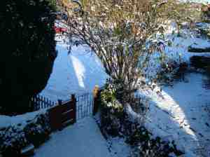 Snow in the north of London